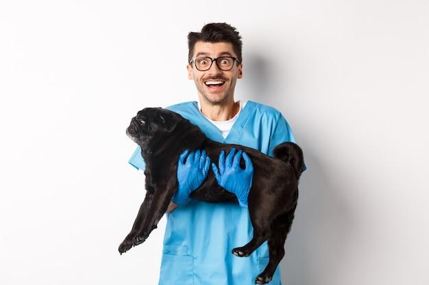 Konzept der tierarztpraxis. glücklicher männlicher arzt tierarzt, der süßen schwarzen mopshund hält und in die kamera lächelt, weißer hintergrund.