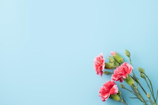 Konzept des muttertagsfeiertagsgrußgeschenkdesigns mit nelkenstrauß auf hellblauer tischoberfläche