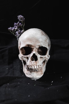 Konzept mit schädel und trockenen blumen