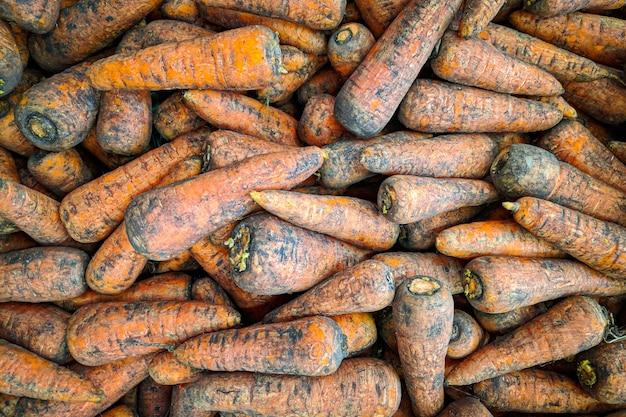 Konzept von naturprodukten und von gesunder ernährung. orange karotte im kasten