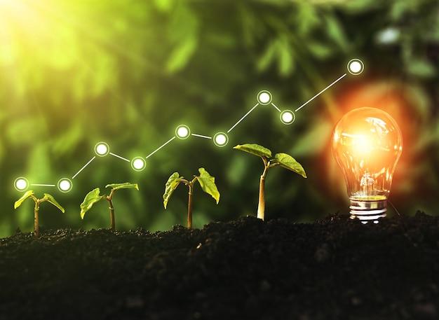Konzept von wachstum, gewinn, entwicklung und erfolg des öko-geschäfts. konzept für ökologie und grüne technologie.