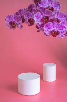 Konzept zur schaffung von marken sowie zur schaffung einer corporate identity auf dem laufsteg mit einer orchidee auf rosa hintergrund.