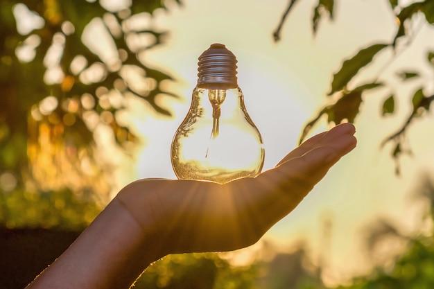 Konzeptenergieenergie von solar in der natur