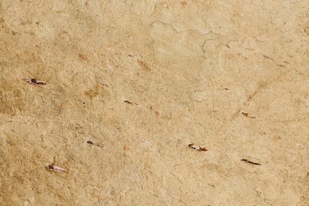 Kopieren sie raum betondecke hintergrund