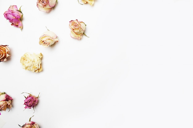Kopieren sie rosen auf dem weißen hintergrund, draufsicht, ebenenlage