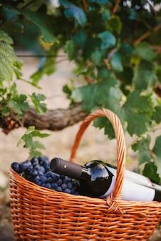 Korb der trauben mit einer flasche wein im weinberg