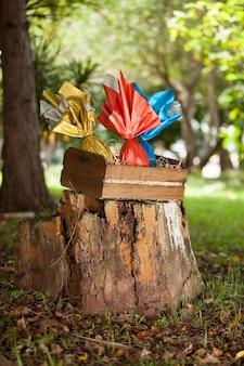 Korb mit brasilianischen ostereiern im wald