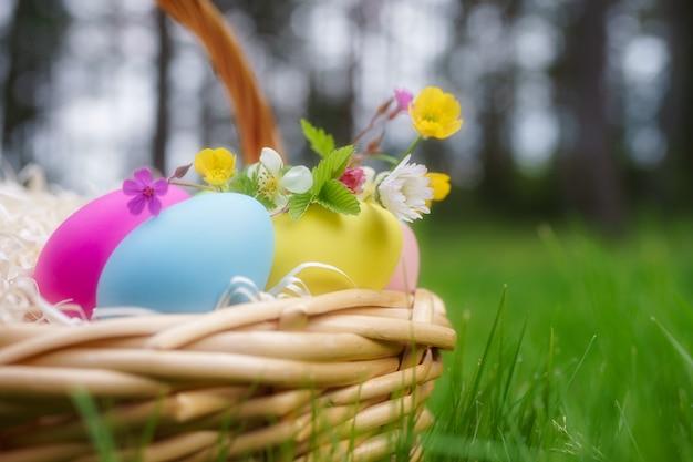 Korb mit bunten ostereiern und frühjahrblumen auf grünem gras