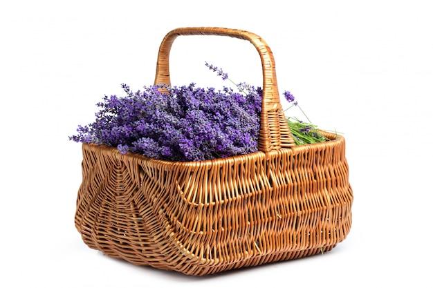 Korb mit einem lavendel, getrennt auf weißem hintergrund