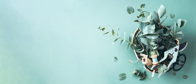 Korb mit eukalyptusblüten, gartenschere, schere