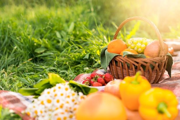 Korb mit früchten auf decke während des picknicks