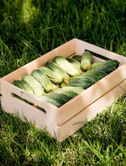 Korb mit gurken gefüllt