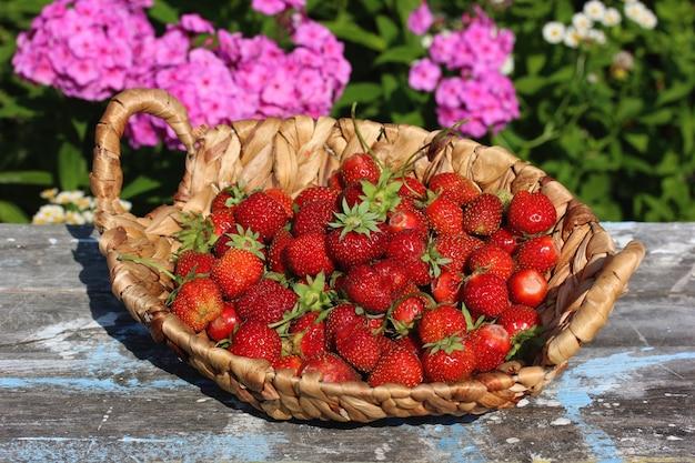 Korb mit roten reifen erdbeeren auf dem tisch im freien. Premium Fotos