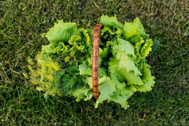 Korb mit salat über ansicht