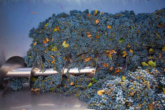 Korkenzieher brecher destemmer weinbereitung mit trauben