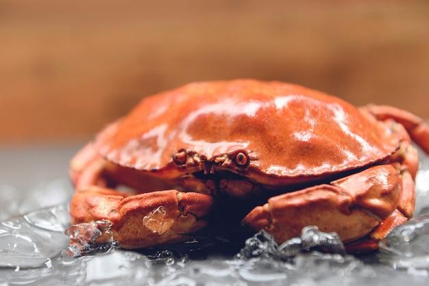 Krabben auf eis, abschluss oben der steinkrabbe gedämpft im meeresfrüchterestaurant
