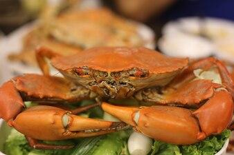 Krabbenfest. Gedämpfte Krabben mit Gewürzen.