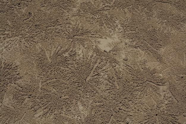 Krabbenspuren auf gelbem sand.