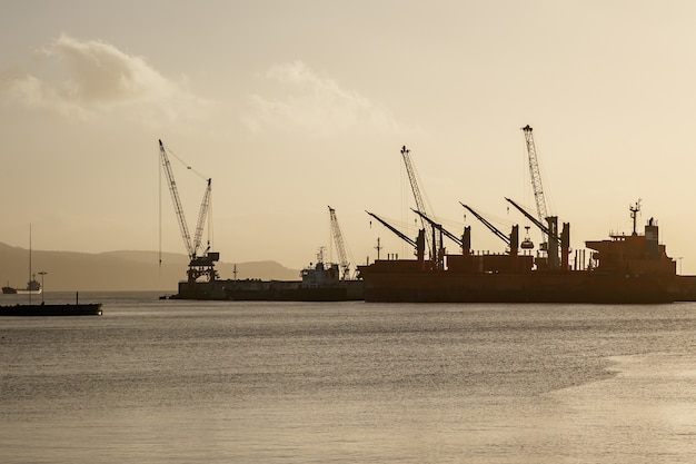 Kräne im seehafen, logistikzentrum am meer, sonnenuntergang