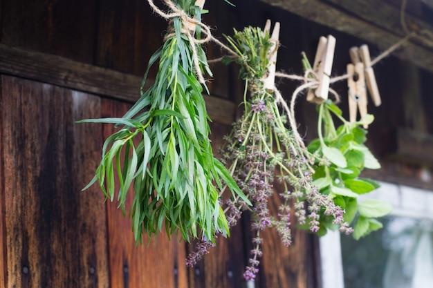 Kräuter hängen und trocknen
