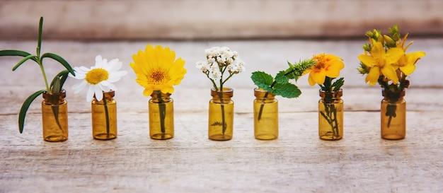 Kräuterauszüge in kleinen flaschen. selektiver fokus