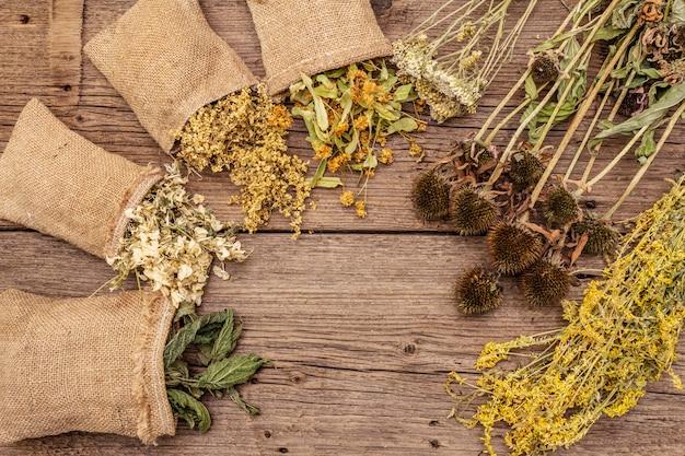 Kräutererntesammlung und blumensträuße von wildkräutern. alternative medizin. natürliche apotheke, self-care-konzept