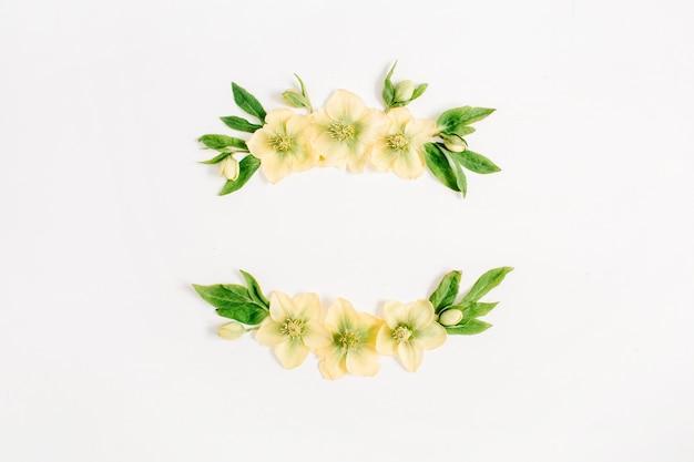 Kranzrahmen aus gelber nieswurzblume und grünem blatt auf weißem hintergrund. flache lage, ansicht von oben