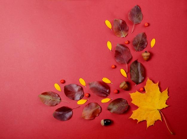 Kreative herbstzusammensetzung. baumast- und gelbblätter auf einem roten hintergrund.
