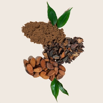 Kreative komposition mit gesundem inhaltsstoff bio-kakaobohnenpulver auf elfenbein