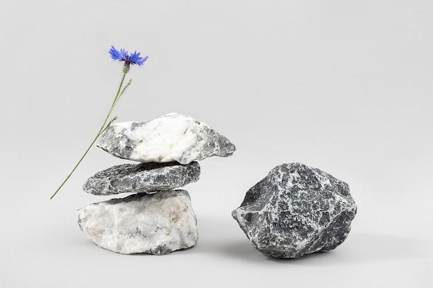 Kreative podeste für kosmetik oder ihr merchandise, produkte. layout aus einem haufen balancierender steine und blauer kornblumenblume auf grauem hintergrund. vorderansicht.