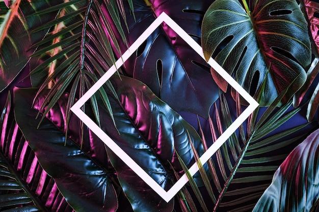 Kreativer hintergrund mit stimmungsvollen tropischen pflanzen und weißem rahmen für kopienraum. beleuchteter reflexionsdschungel für poster.