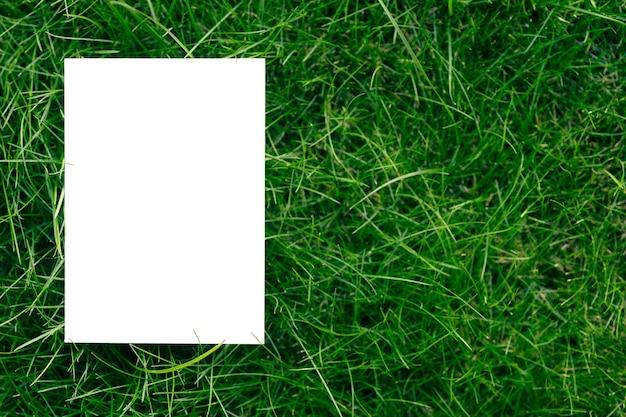 Kreativer layout-kompositionsrahmen aus grünem frischem gras mit einer schönen textur mit einem weißen pa...