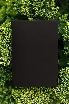 Kreativer layout-kompositionsrahmen aus grünem strauch der sediumblume mit schwarzem papierkarten-notizf...