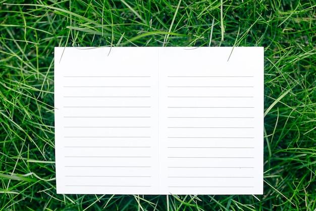 Kreativer layout-zusammensetzungsrahmen aus grünem grasrasen mit einer weißen, leeren anleitung aus pappe für pflege und materialien flach legen und platz für das logo kopieren.