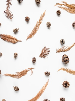 Kreativer natürlicher hintergrund der flachen lage von trockenen pflanzenteilen des winters