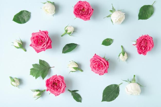 Kreatives arrangement mit weißen und rosa rosen auf pastellblauem hintergrund. minimales frühlingsblütenkonzept.