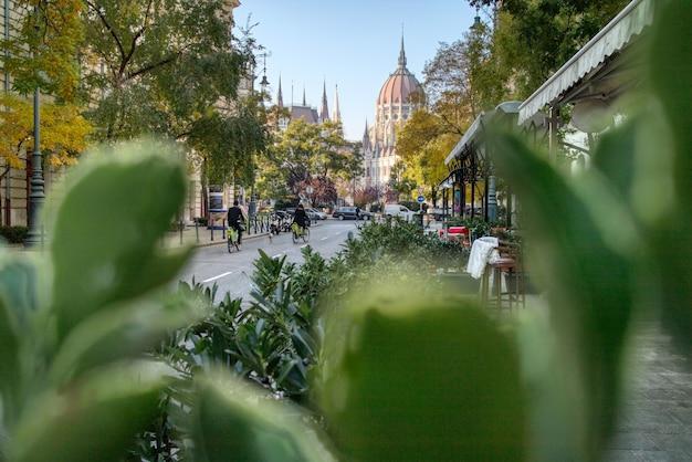 Kreatives bild der stadtlandschaft mit grüner pflanzenfront zum ungarischen paliament-gebäude in budapest, ungarn.