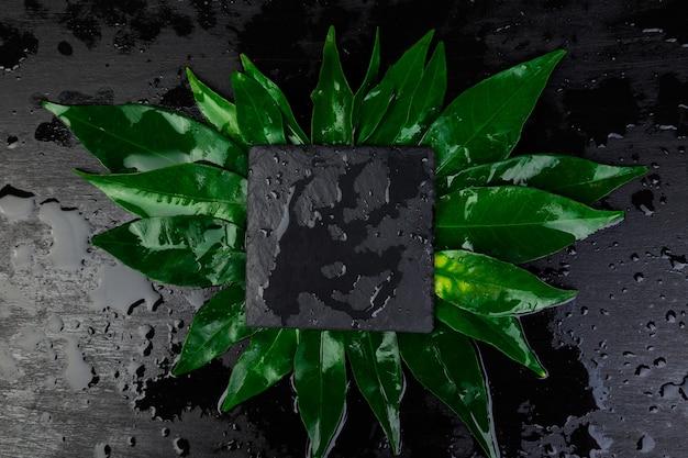Kreatives layout aus blättern mit schwarzer schieferplatten-kartennotiz
