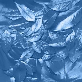 Kreatives layout aus tropischen blättern in monochromer farbe. trendy blau und ruhige farbe. flach liegen. draufsicht.