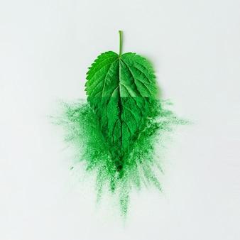 Kreatives layout mit grünem blatt und puder oder gewürz auf heller tischwand. minimales gesundes natürliches lebensmittelkonzept. flach liegen.