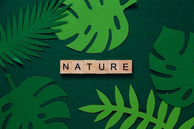 Kreatives layout tropischer blätter mit der aufschrift