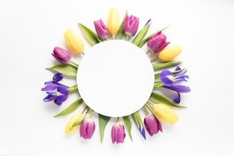 Kreis auf Tulpen und Iris