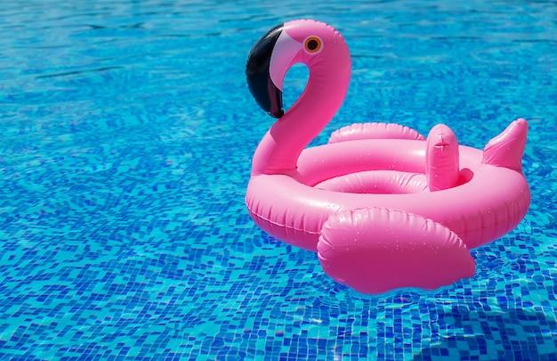 Kreis von flamingos im pool. selektiver fokus. wasser.
