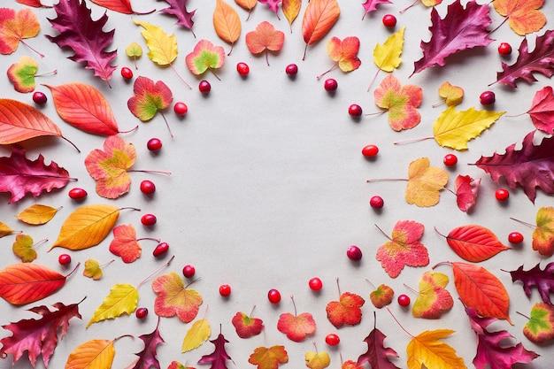 Kreisförmiger hintergrund des herbstes mit verschiedenen herbstblättern, rot, orange und gelb. flach lag auf weißem steinhintergrund, kopierraum.