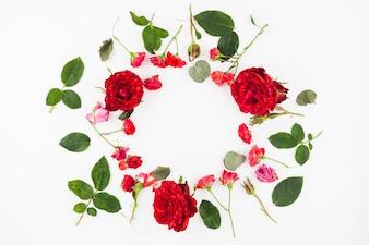 Kreisrahmen gemacht mit roten Rosen und Blättern auf weißem Hintergrund