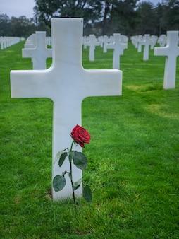Kreuz mit roter rose auf dem amerikanischen friedhof in collevillesurmer frankreich