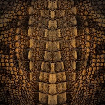 Krokodil haut textur