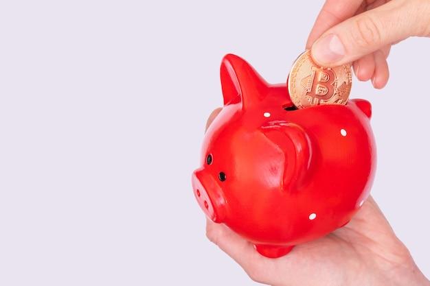 Kryptowährungs-sparkonzept. eine hand hält eine bitcoin-münze über einem roten sparschwein auf einem weißen hintergrund. neues finanzsystem. konzept der akkumulation von elektronischem digitalem geld.