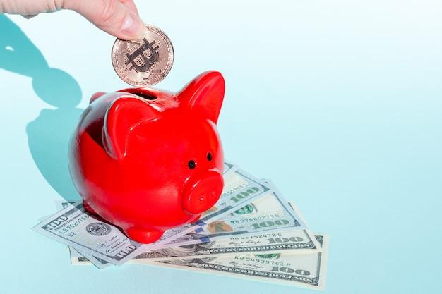 Kryptowährungs-sparkonzept. eine hand legt eine bitcoin-münze in ein rotes sparschwein, das auf hundert dollarnoten an einer blauen wand steht, und kopiert platz.
