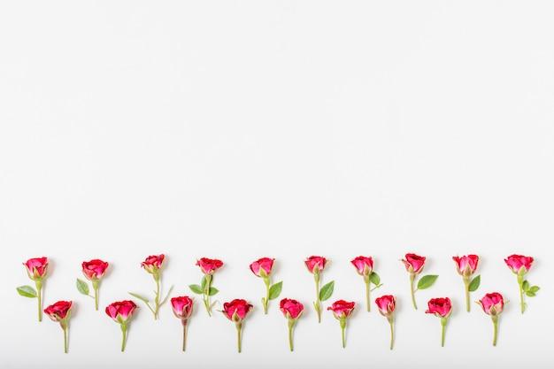 Künstlerisches konzept der roten rosen mit kopienraum